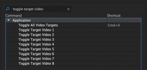 toggle_target_video_shortcuts