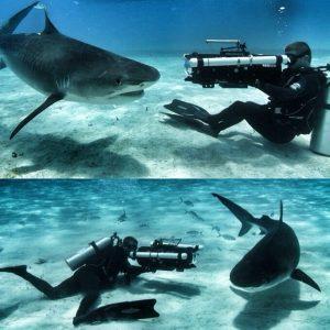 more underwater